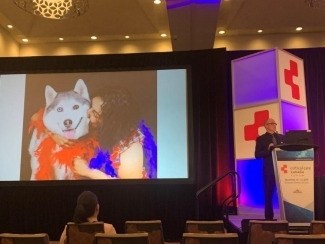 Randall Tressider presents at Canadian Critical Care Forum in 2019, alongside a photo of his deceased wife Shelly Sarwal