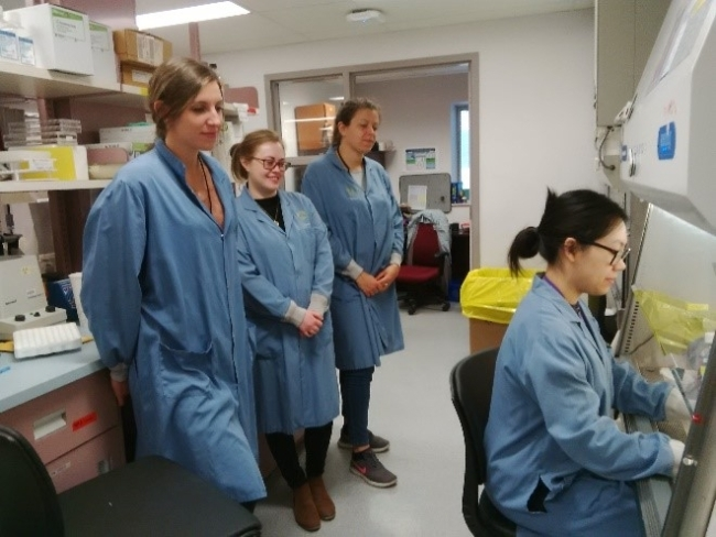 2.	Training international students to perform the monocyte monolayer assay. Charlotte Paquet (France), Mairead Holton (Ireland), and Elodie Dupeuble (France) watch Selena Cen (Branch laboratory, Canadian Blood Services) perform the monocyte monolayer assay.