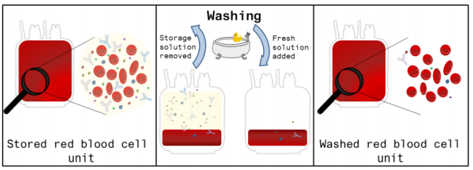 RU 23 washing red blood cells